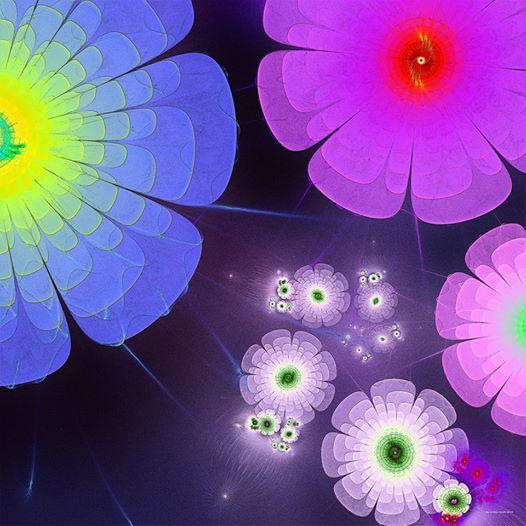 fractal flowers in space